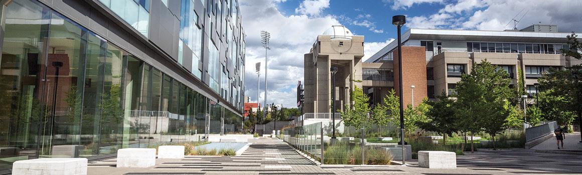 York U is Canada's progressive university